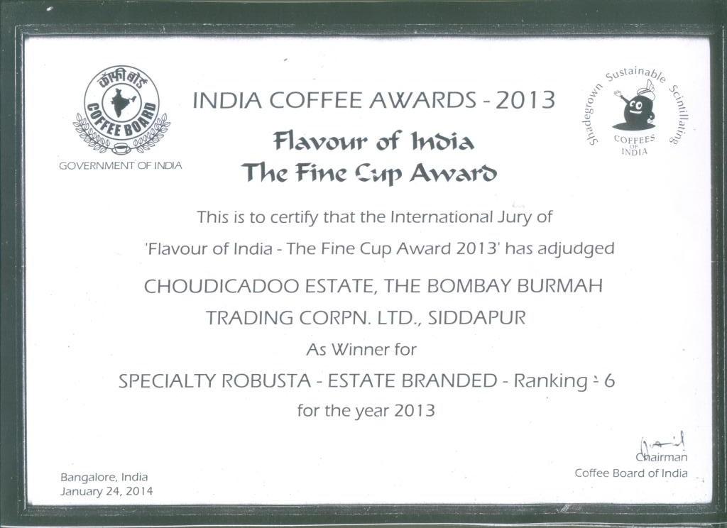 Award Certificate.4